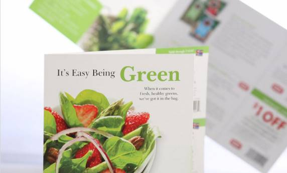 Giant Eagle Green Brochure