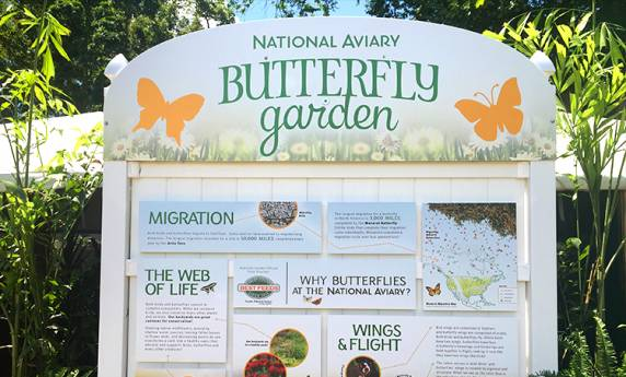 National Aviary Butterfly Garden