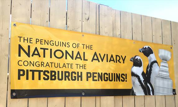National Aviary & the Pittsburgh Penguins