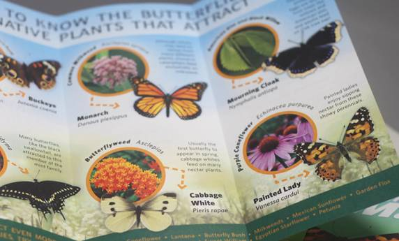National Aviary Butterfly Garden Publication