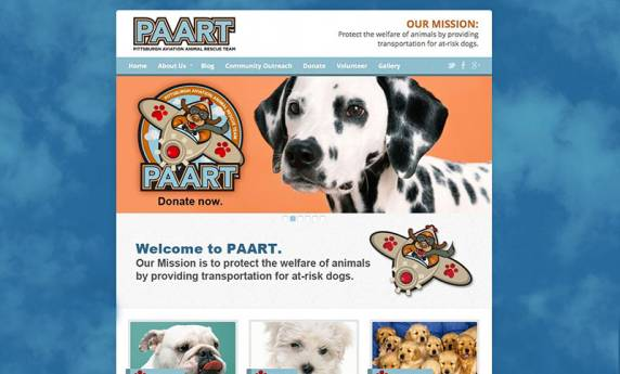 PAART Website Design